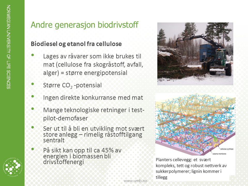 NORWEGIAN UNIVERSITY OF LIFE SCIENCES www.umb.no 6 Prosessdiagram – bioethanol fra lignocellulose IEA BIOENERGY: T41(2): 2008:01.