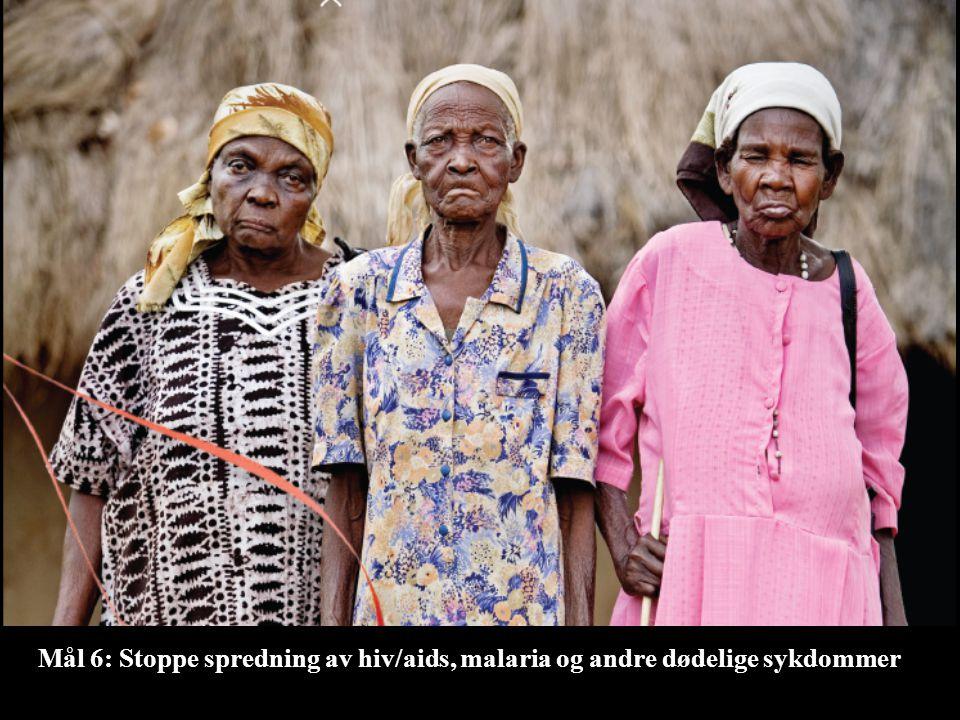 Mål 6: Stoppe spredning av hiv/aids, malaria og andre dødelige sykdommer