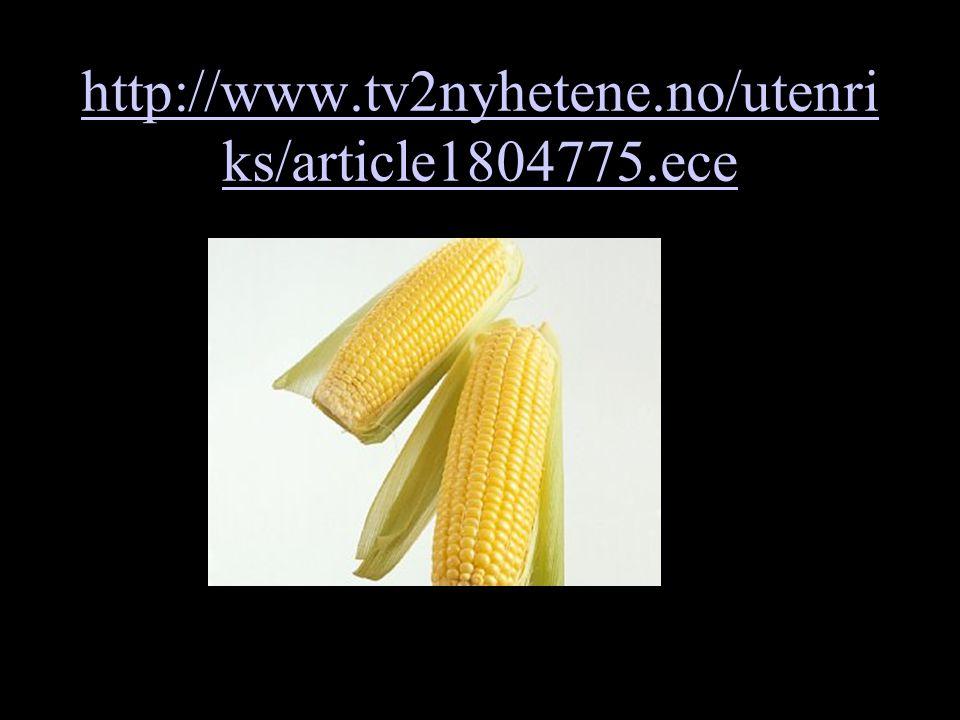 http://www.tv2nyhetene.no/utenri ks/article1804775.ece