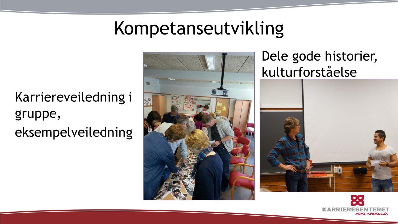 Kompetanseutvikling Karriereveiledning i gruppe, eksempelveiledning Dele gode historier, kulturforståelse