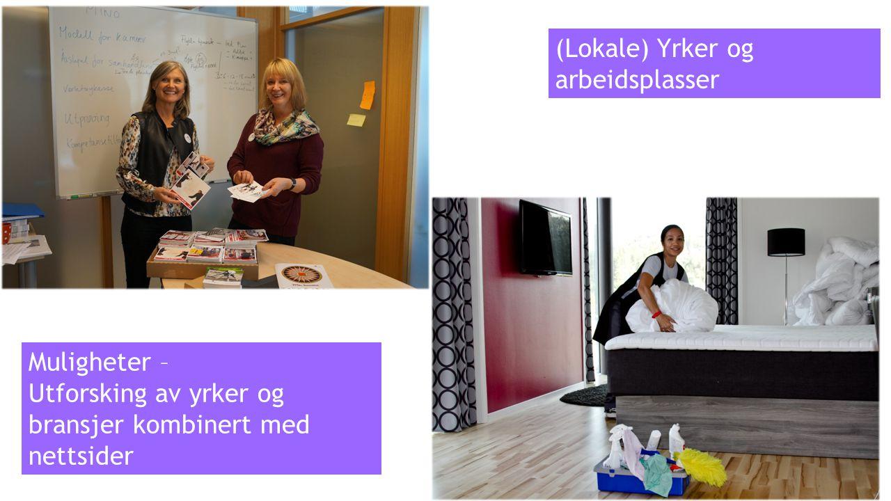 (Lokale) Yrker og arbeidsplasser Muligheter – Utforsking av yrker og bransjer kombinert med nettsider