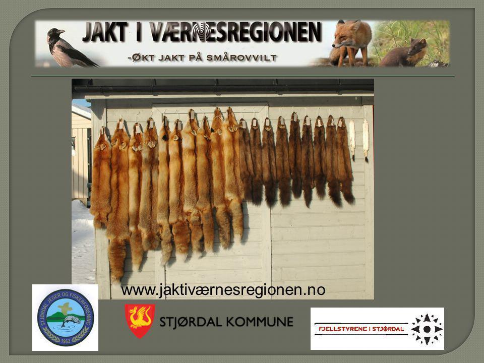 www.jaktiværnesregionen.no