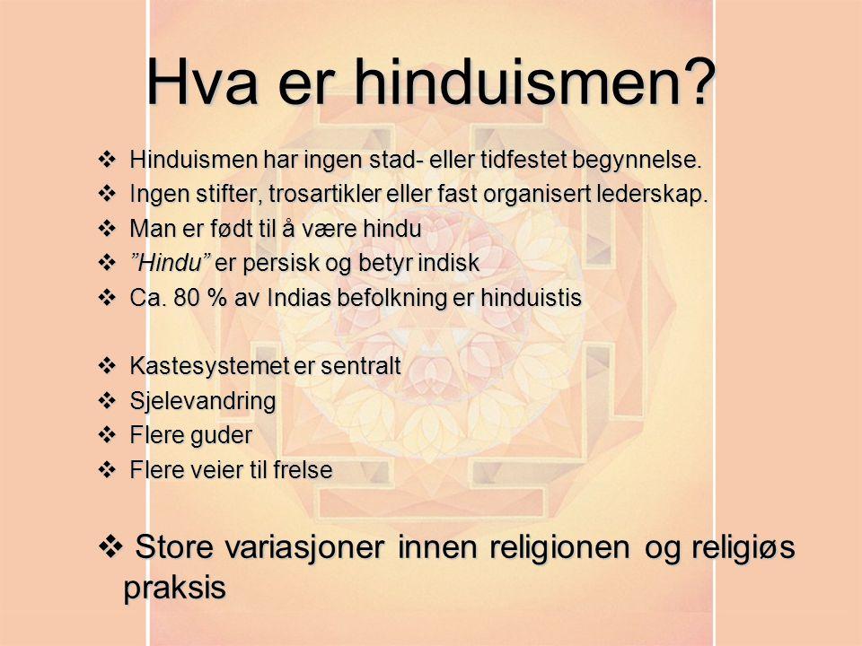 Hva betyr hindu
