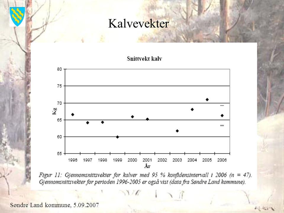 Søndre Land kommune, 5.09.2007 Kalvevekter