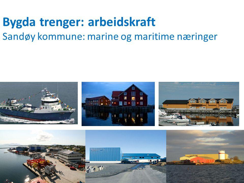 Bygda trenger: arbeidskraft Sandøy kommune: marine og maritime næringer