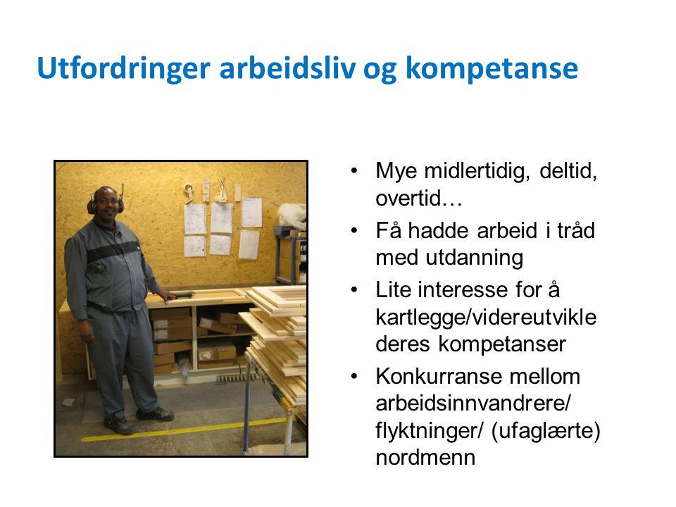 Utfordringer arbeidsliv og kompetanse Mye midlertidig, deltid, overtid… Få hadde arbeid i tråd med utdanning Lite interesse for å kartlegge/videreutvikle deres kompetanser Konkurranse mellom arbeidsinnvandrere/ flyktninger/ (ufaglærte) nordmenn