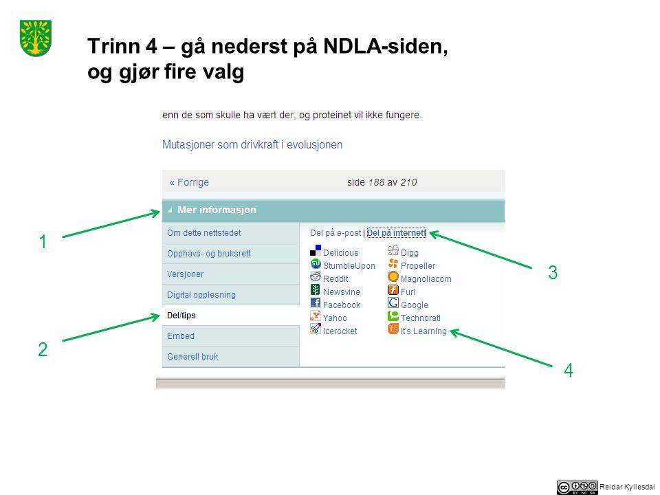 Reidar Kyllesdal Trinn 4 – gå nederst på NDLA-siden, og gjør fire valg 1 2 3 4