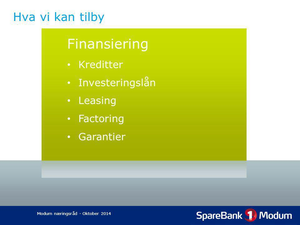 Hva vi kan tilby Finansiering Kreditter Investeringslån Leasing Factoring Garantier Modum næringsråd - Oktober 2014