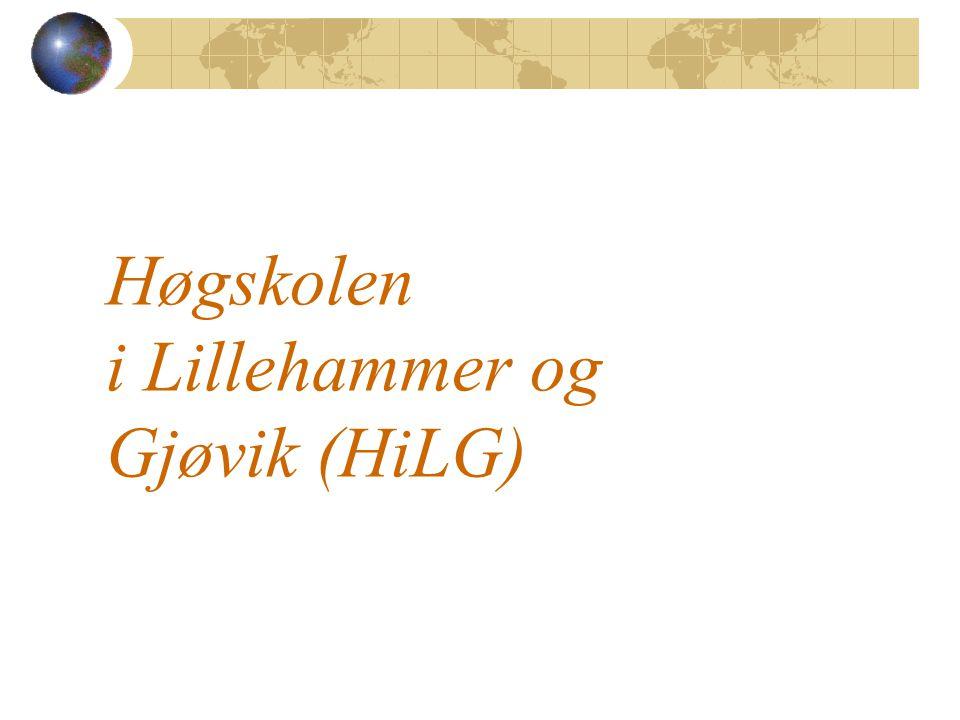 Høgskolen i Lillehammer og Gjøvik (HiLG)