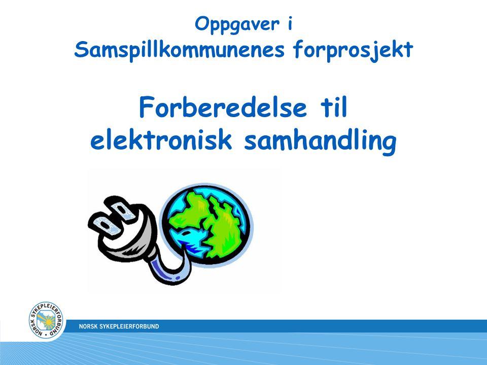 Oppgaver i Samspillkommunenes forprosjekt Forberedelse til elektronisk samhandling