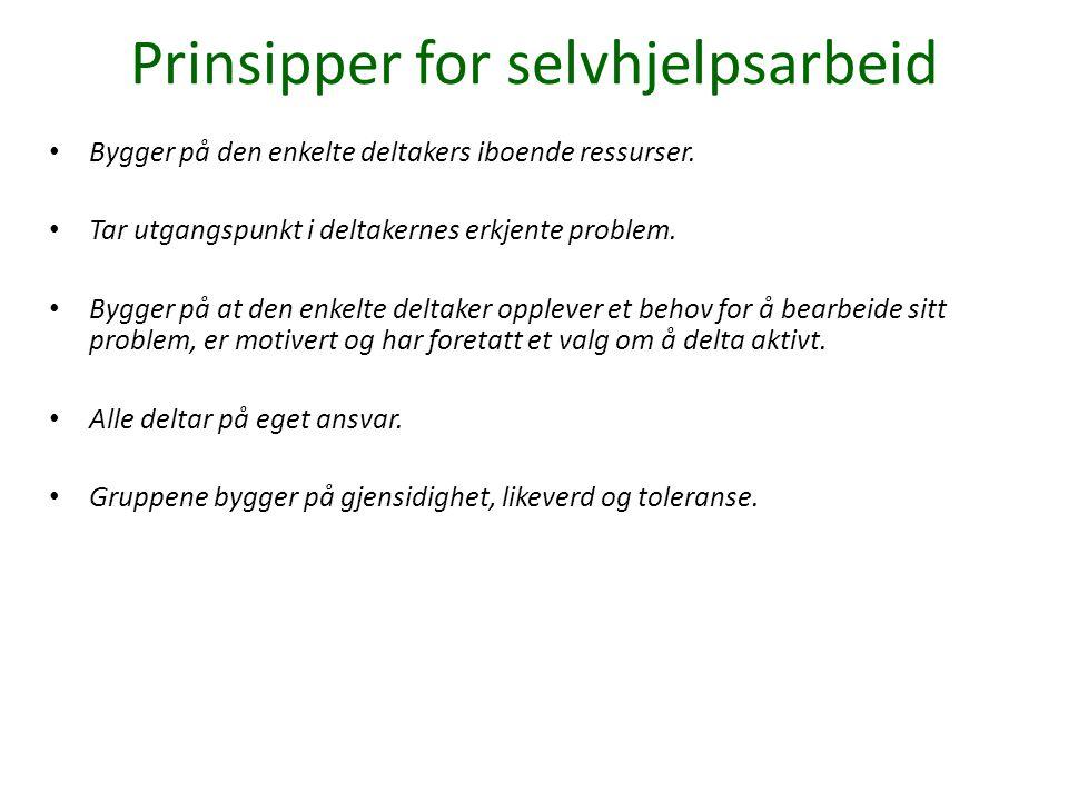 Prinsipper for selvhjelpsarbeid Bygger på den enkelte deltakers iboende ressurser. Tar utgangspunkt i deltakernes erkjente problem. Bygger på at den e
