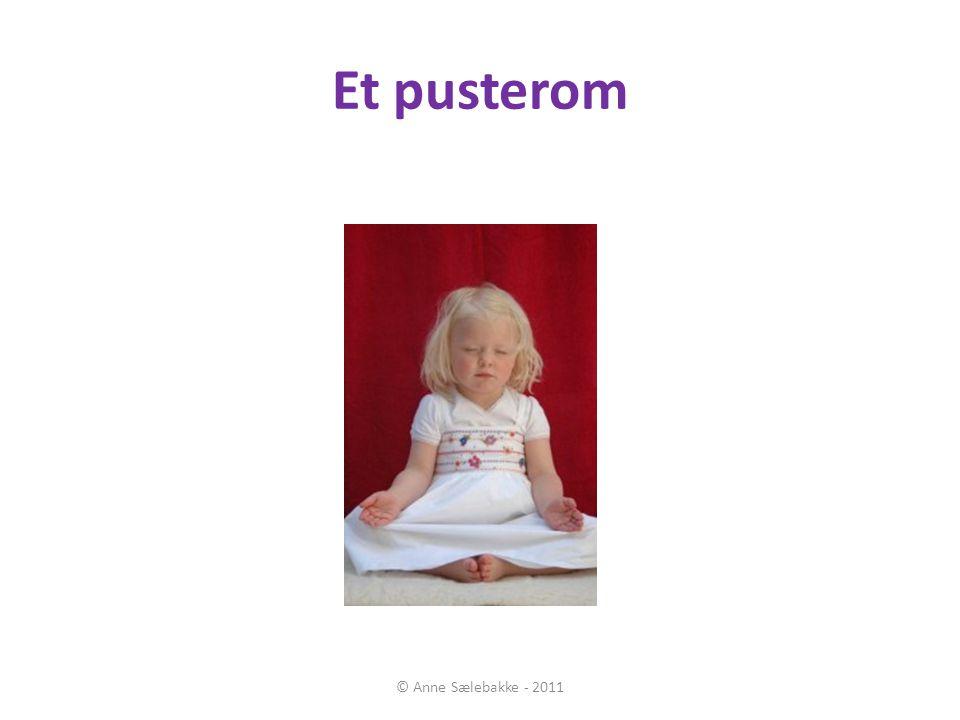 Et pusterom © Anne Sælebakke - 2011