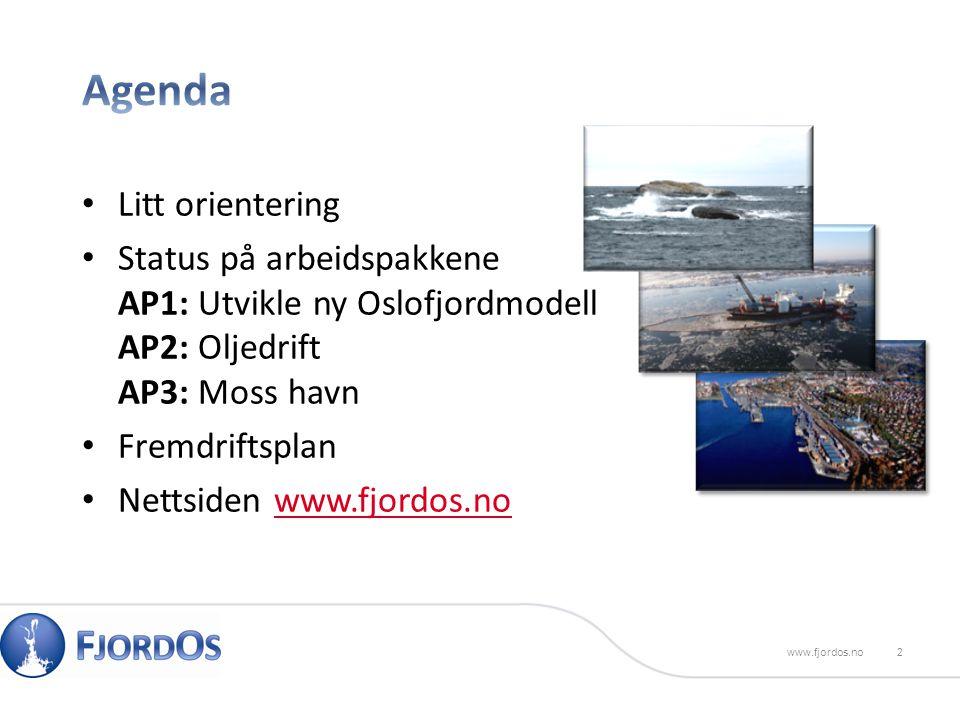 Litt orientering Status på arbeidspakkene AP1: Utvikle ny Oslofjordmodell AP2: Oljedrift AP3: Moss havn Fremdriftsplan Nettsiden www.fjordos.nowww.fjordos.no 2