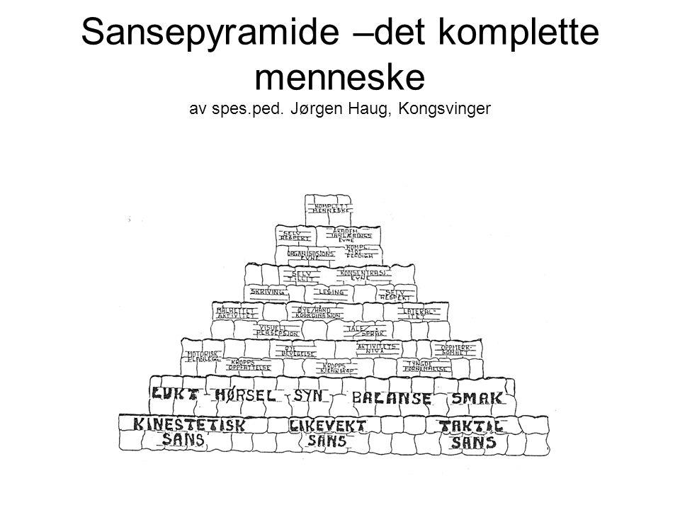 Sansepyramide –det komplette menneske av spes.ped. Jørgen Haug, Kongsvinger