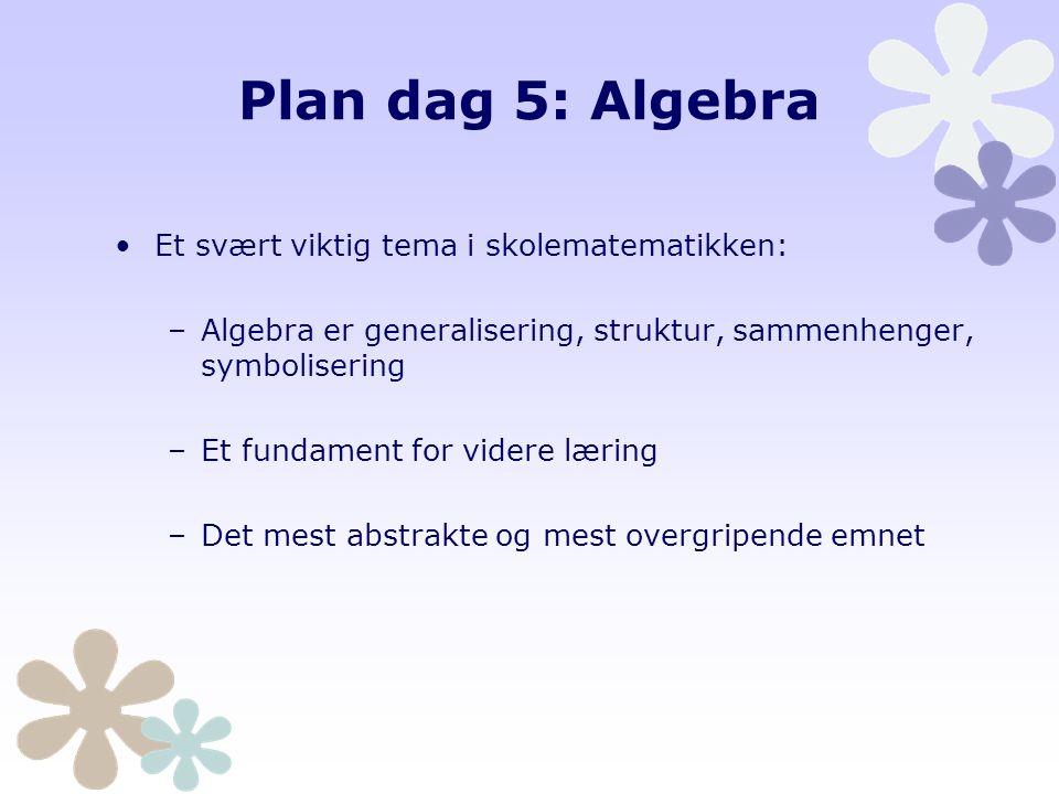 Plan dag 6 Grunnleggende ferdighet regning i alle fag