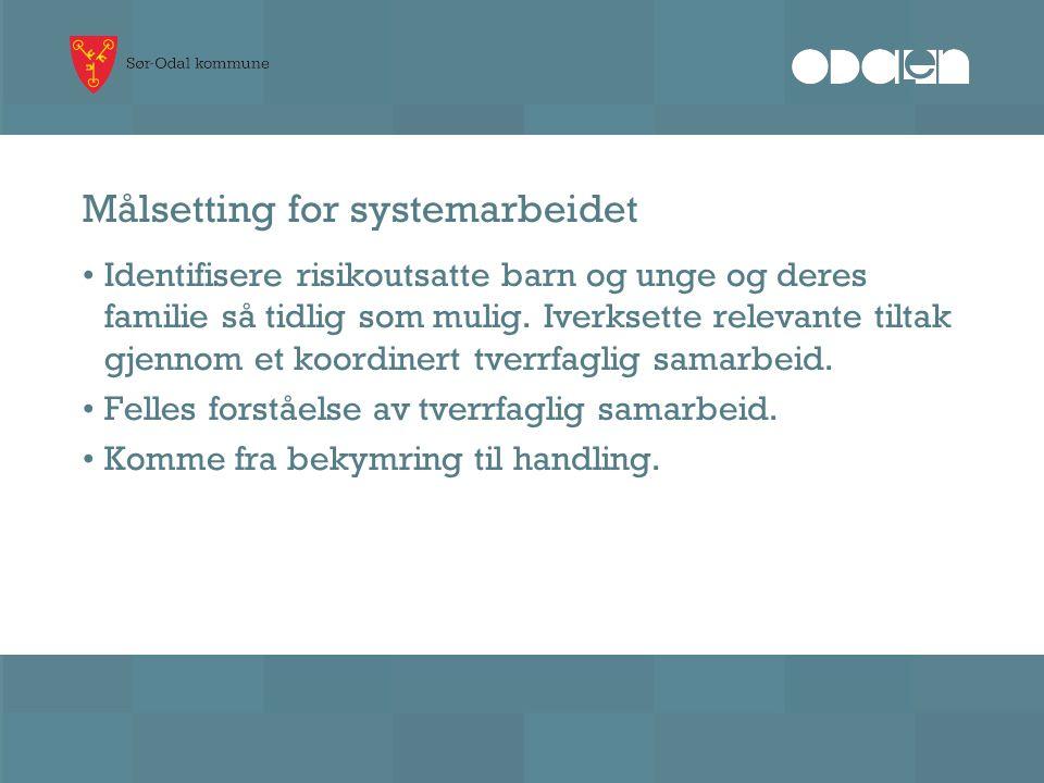 Tiltak – systemrettet arbeid Bidra til å utarbeide tverrfaglig plan for kompetanseheving i Sør-Odal kommune.