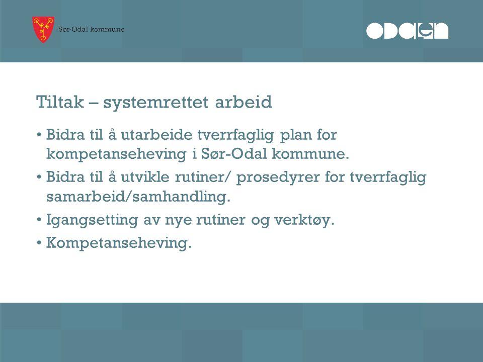 Tiltak – systemrettet arbeid Bidra til å utarbeide tverrfaglig plan for kompetanseheving i Sør-Odal kommune. Bidra til å utvikle rutiner/ prosedyrer f