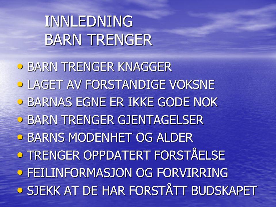 INNLEDNING BARN TRENGER BARN TRENGER KNAGGER BARN TRENGER KNAGGER LAGET AV FORSTANDIGE VOKSNE LAGET AV FORSTANDIGE VOKSNE BARNAS EGNE ER IKKE GODE NOK