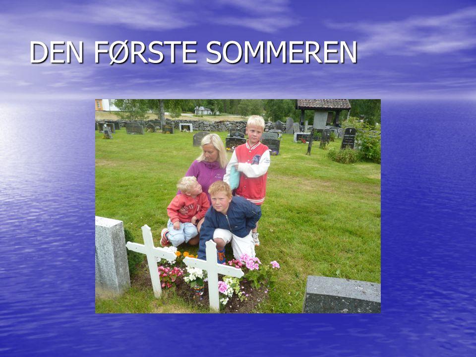 NYTTÅRSAFTEN PÅ BESTEMORS GRAV I HJARTDAL