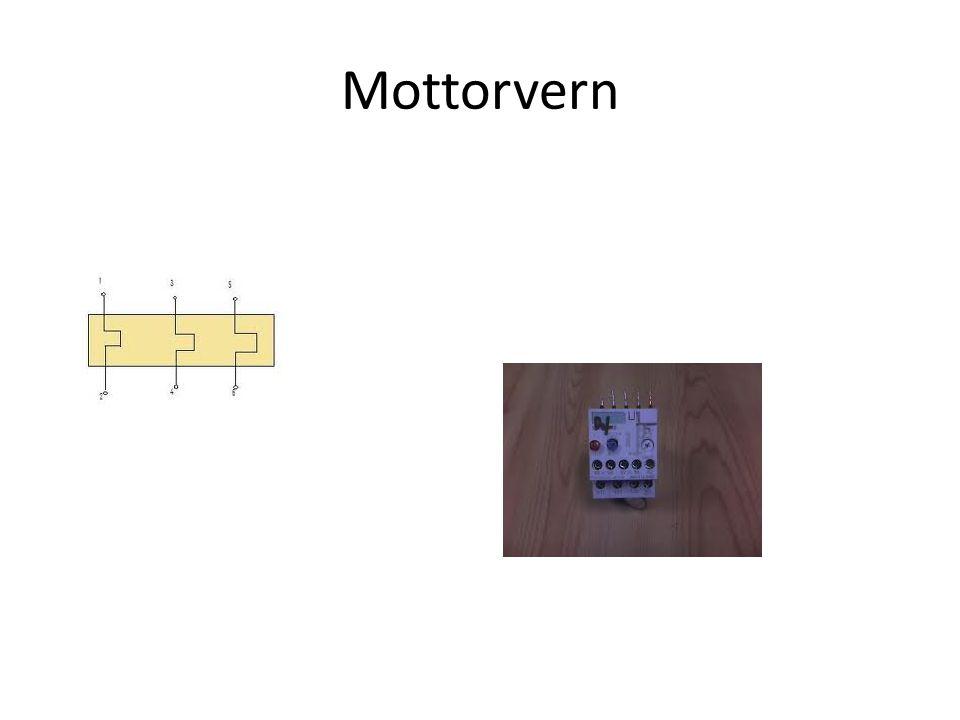 Mottorvern