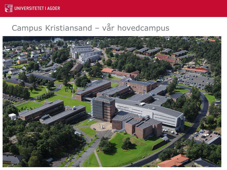 Campus Kristiansand – vår hovedcampus 7