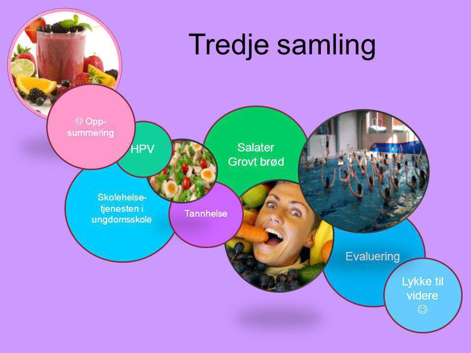 Tredje samling Skolehelse- tjenesten i ungdomsskole Evaluering Salater Grovt brød Lykke til videre Tannhelse HPV Opp- summering
