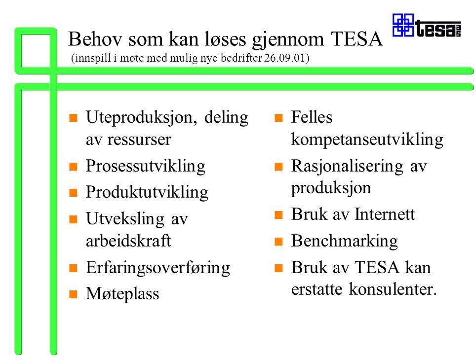 Behov som kan løses gjennom TESA (innspill i møte med mulig nye bedrifter 26.09.01) n Uteproduksjon, deling av ressurser n Prosessutvikling n Produktu