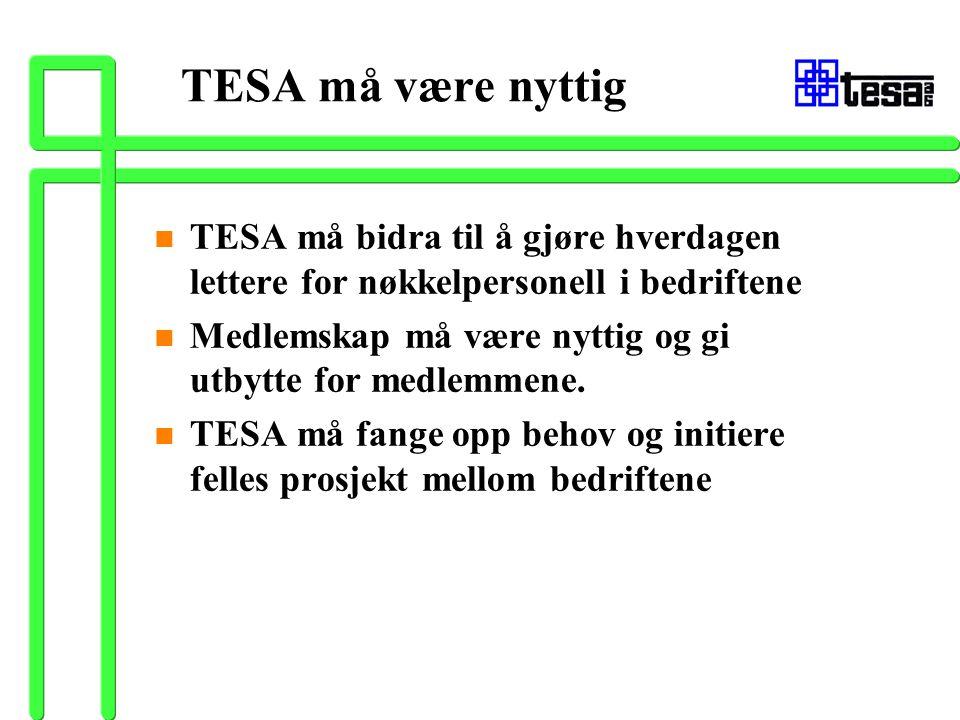 TESA må være nyttig n TESA må bidra til å gjøre hverdagen lettere for nøkkelpersonell i bedriftene n Medlemskap må være nyttig og gi utbytte for medle