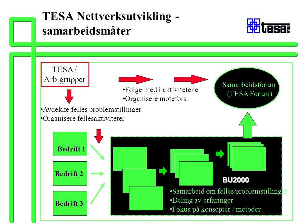 TESA Nettverksutvikling - samarbeidsmåter TESA / Arb.grupper Avdekke felles problemstillinger Organisere fellesaktiviteter Følge med i aktivitetene Or