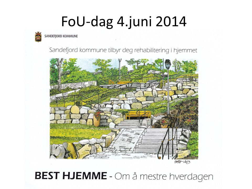 FoU-dag 4.juni 2014 Copyrights prosjektleder Gunnbjørg Furuset 2013