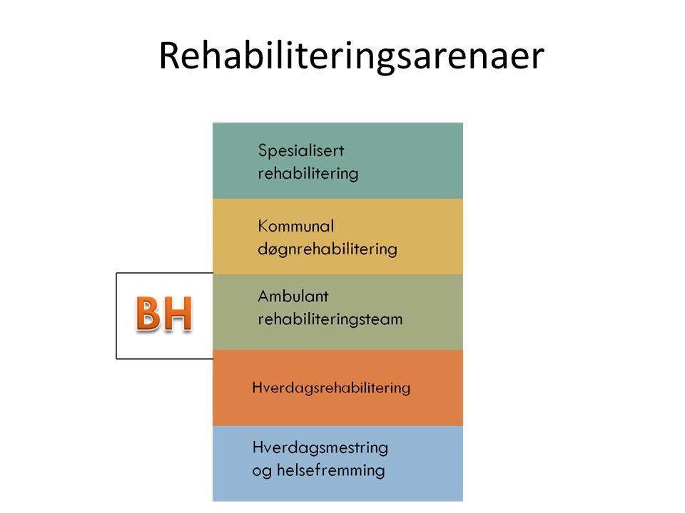 Rehabiliteringsarenaer
