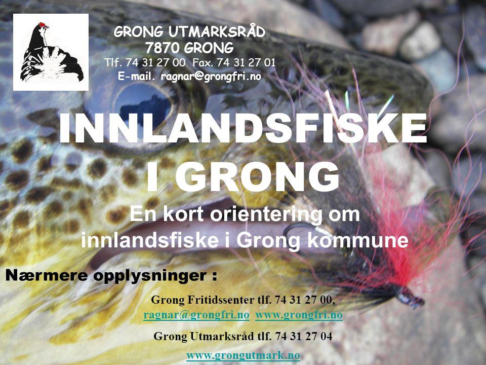 INNLANDSFISKE I GRONG En kort orientering om innlandsfiske i Grong kommune Nærmere opplysninger : Grong Fritidssenter tlf.