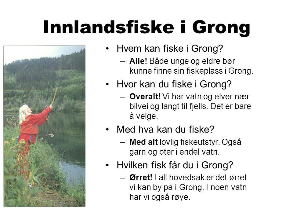 Innlandsfiske i Grong Hvem kan fiske i Grong. –Alle.