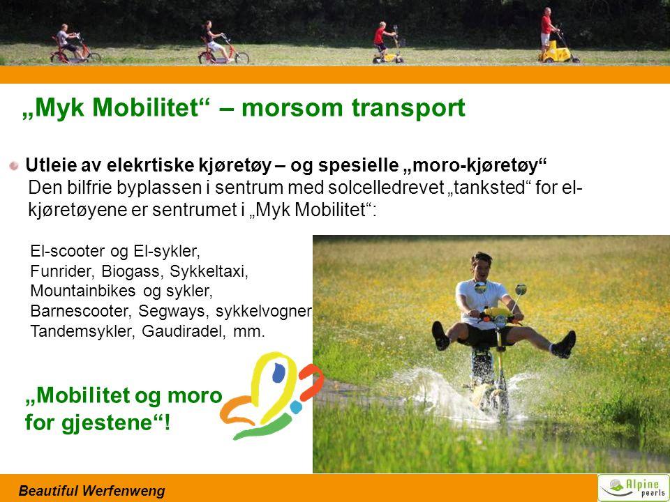 """Beautiful Werfenweng """"Myk Mobilitet – morsom transport Utleie av elekrtiske kjøretøy – og spesielle """"moro-kjøretøy Den bilfrie byplassen i sentrum med solcelledrevet """"tanksted for el- kjøretøyene er sentrumet i """"Myk Mobilitet : El-scooter og El-sykler, Funrider, Biogass, Sykkeltaxi, Mountainbikes og sykler, Barnescooter, Segways, sykkelvogner, Tandemsykler, Gaudiradel, mm."""