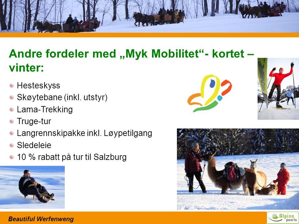 """Beautiful Werfenweng Andre fordeler med """"Myk Mobilitet - kortet – vinter: Hesteskyss Skøytebane (inkl."""