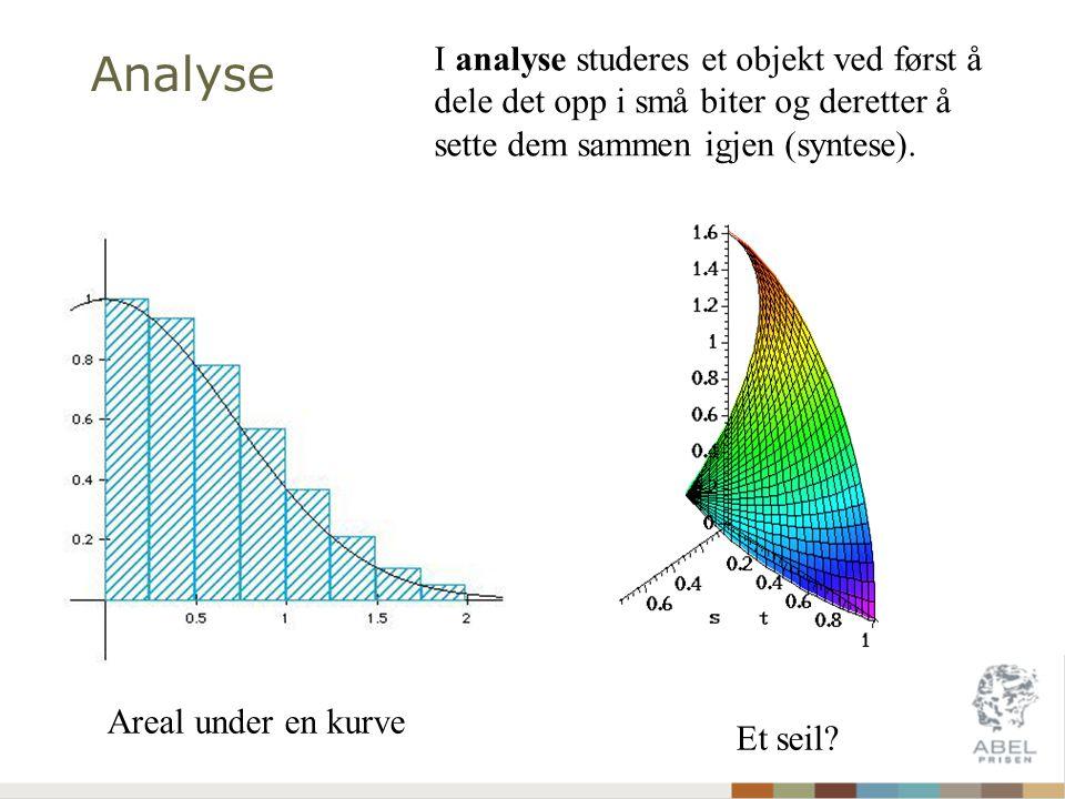 Analyse Et seil? Areal under en kurve I analyse studeres et objekt ved først å dele det opp i små biter og deretter å sette dem sammen igjen (syntese)