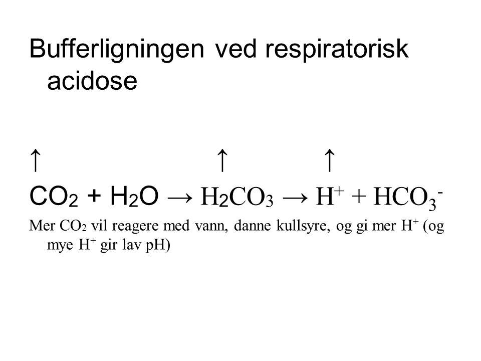 Bufferligningen ved respiratorisk acidose ↑ ↑ ↑ CO 2 + H 2 O → H 2 CO 3 → H + + HCO 3 - Mer CO 2 vil reagere med vann, danne kullsyre, og gi mer H + (og mye H + gir lav pH)