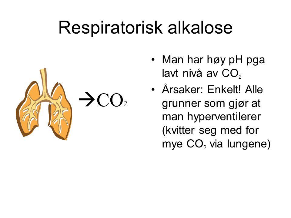 Respiratorisk alkalose Man har høy pH pga lavt nivå av CO 2 Årsaker: Enkelt.