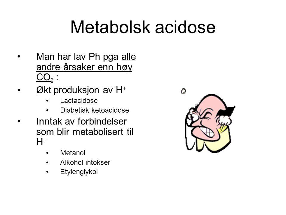Metabolsk acidose Man har lav Ph pga alle andre årsaker enn høy CO 2 : Økt produksjon av H + Lactacidose Diabetisk ketoacidose Inntak av forbindelser som blir metabolisert til H + Metanol Alkohol-intokser Etylenglykol