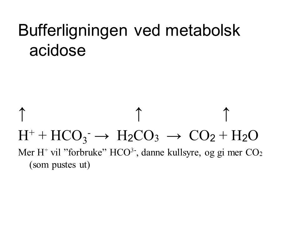 Bufferligningen ved metabolsk acidose ↑ ↑ ↑ H + + HCO 3 - → H 2 CO 3 → CO 2 + H 2 O Mer H + vil forbruke HCO 3-, danne kullsyre, og gi mer CO 2 (som pustes ut)