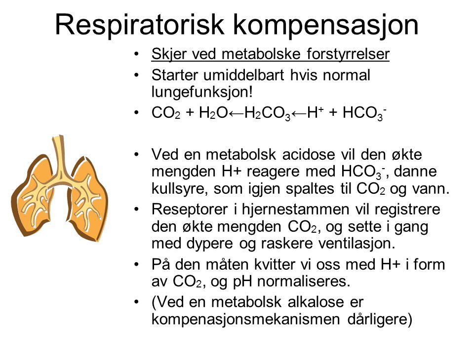 Respiratorisk kompensasjon Skjer ved metabolske forstyrrelser Starter umiddelbart hvis normal lungefunksjon.