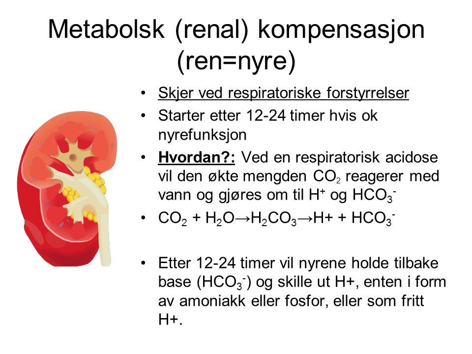 Metabolsk (renal) kompensasjon (ren=nyre) Skjer ved respiratoriske forstyrrelser Starter etter 12-24 timer hvis ok nyrefunksjon Hvordan?: Ved en respiratorisk acidose vil den økte mengden CO 2 reagerer med vann og gjøres om til H + og HCO 3 - CO 2 + H 2 O→H 2 CO 3 →H+ + HCO 3 - Etter 12-24 timer vil nyrene holde tilbake base (HCO 3 - ) og skille ut H+, enten i form av amoniakk eller fosfor, eller som fritt H+.