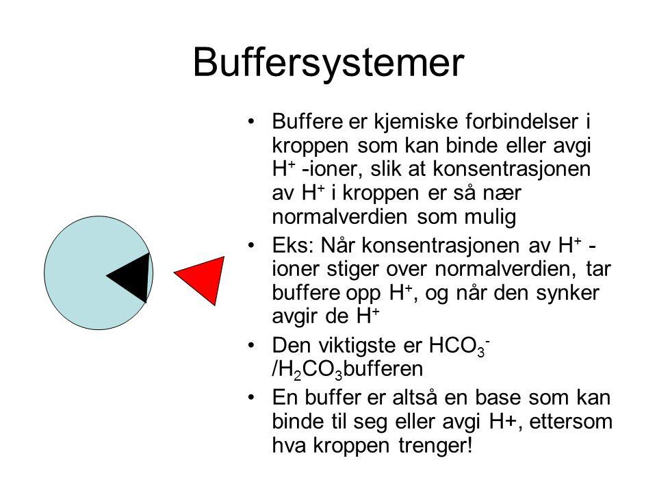 Buffersystemer Buffere er kjemiske forbindelser i kroppen som kan binde eller avgi H + -ioner, slik at konsentrasjonen av H + i kroppen er så nær normalverdien som mulig Eks: Når konsentrasjonen av H + - ioner stiger over normalverdien, tar buffere opp H +, og når den synker avgir de H + Den viktigste er HCO 3 - /H 2 CO 3 bufferen En buffer er altså en base som kan binde til seg eller avgi H+, ettersom hva kroppen trenger!