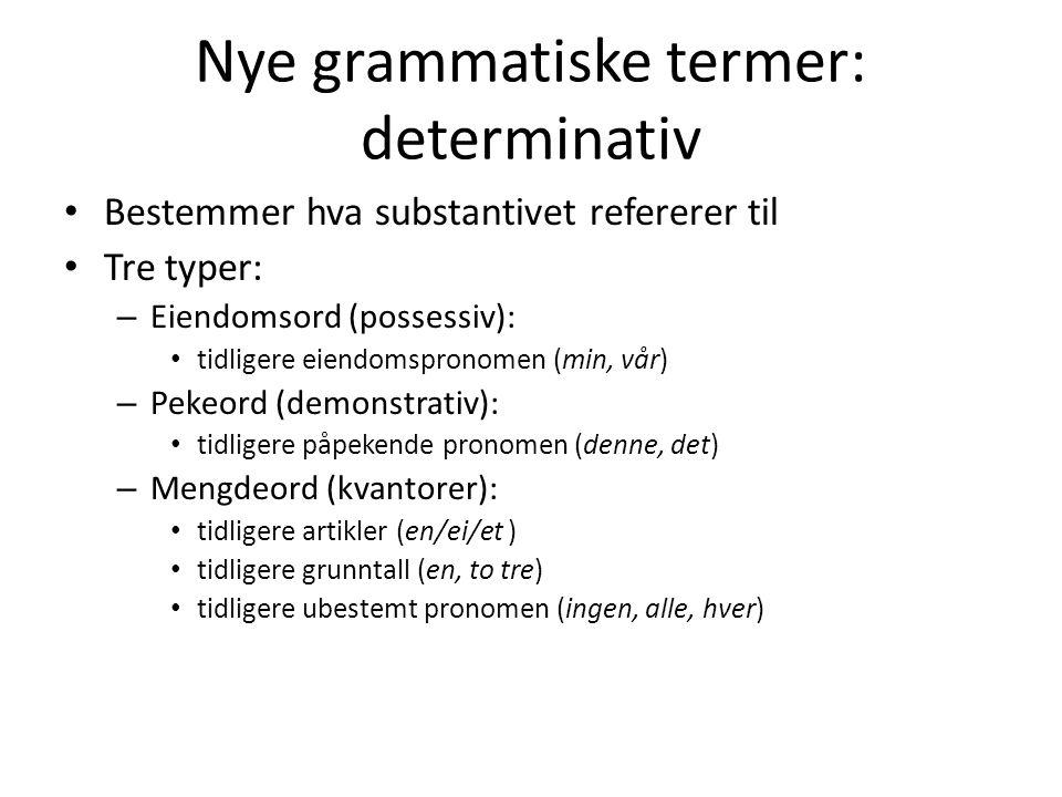 Nye grammatiske termer: determinativ Bestemmer hva substantivet refererer til Tre typer: – Eiendomsord (possessiv): tidligere eiendomspronomen (min, vår) – Pekeord (demonstrativ): tidligere påpekende pronomen (denne, det) – Mengdeord (kvantorer): tidligere artikler (en/ei/et ) tidligere grunntall (en, to tre) tidligere ubestemt pronomen (ingen, alle, hver)