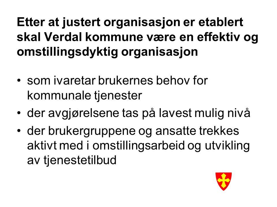 Etter at justert organisasjon er etablert skal Verdal kommune være en effektiv og omstillingsdyktig organisasjon som ivaretar brukernes behov for komm