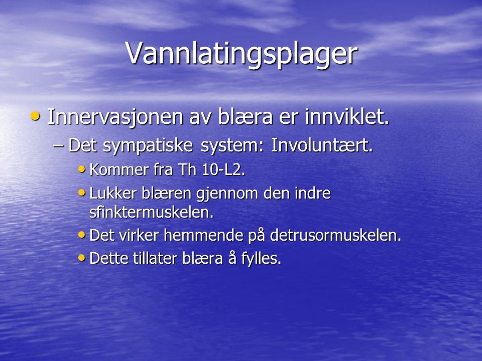 Vannlatingsplager Innervasjonen av blæra er innviklet. Innervasjonen av blæra er innviklet. –Det sympatiske system: Involuntært. Kommer fra Th 10-L2.