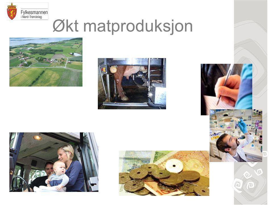 Økt matproduksjon