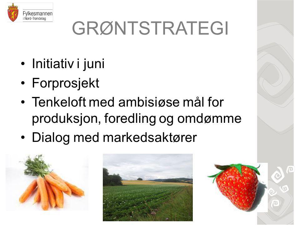 GRØNTSTRATEGI Initiativ i juni Forprosjekt Tenkeloft med ambisiøse mål for produksjon, foredling og omdømme Dialog med markedsaktører