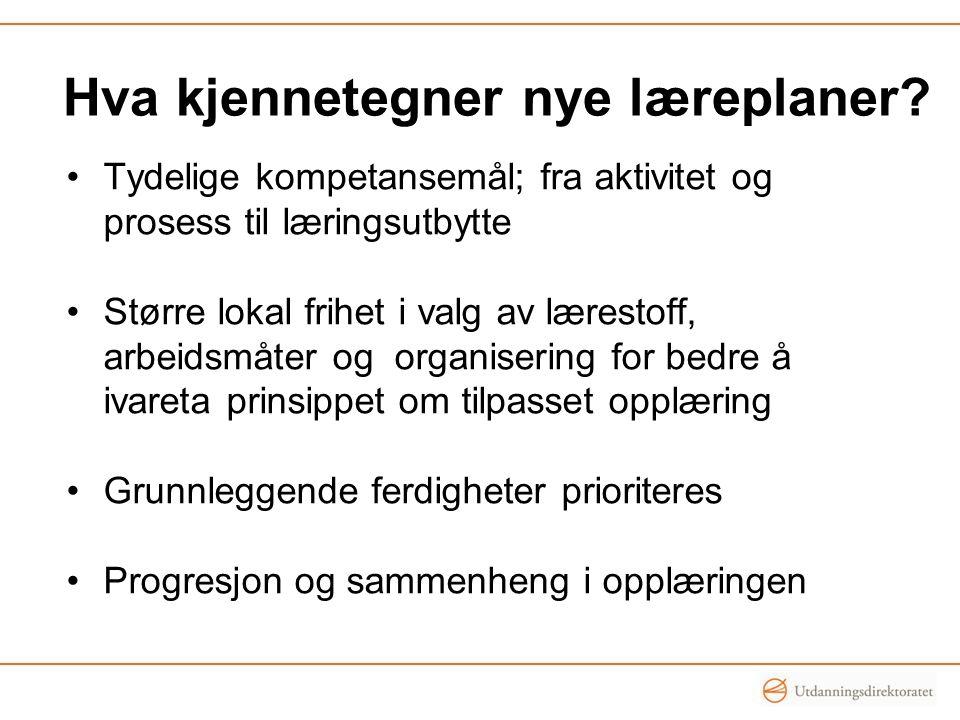 Departementet vil Gjennomgå regelverket om individvurdering Prøve ut ulike virkemidler for vurdering, blant annet felles kjennetegn for å vurdere elevenes faglige utbytte Styrke lærernes kompetanse i vurdering Prioritere forskning om vurdering i norsk skole