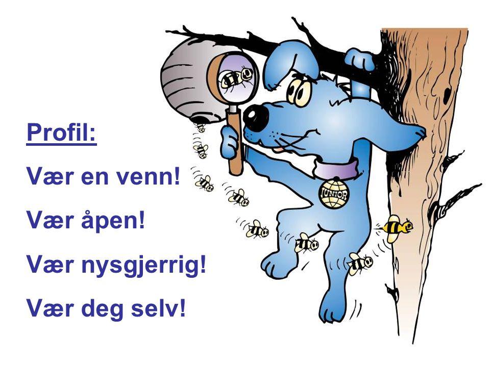 Landsmøter Bergen 2007 Profil: Vær en venn! Vær åpen! Vær nysgjerrig! Vær deg selv!